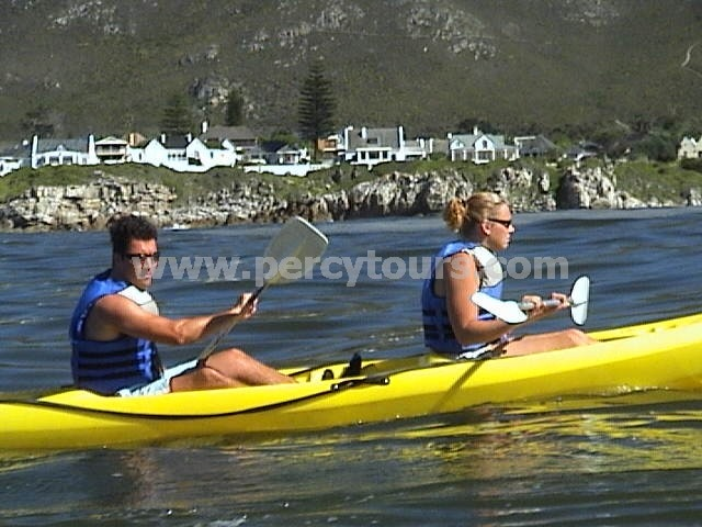 Kayaking in Hermanus