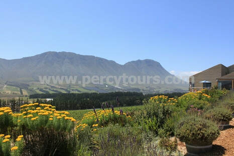 Wine Tours, Wineries and Wine Cellars, Hermanus, South Africa